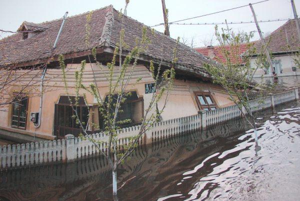 rast inundatii (2)