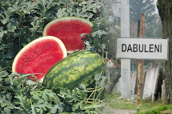 Dabuleni