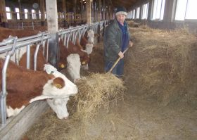 agricultura 2
