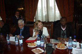 delegatie 4