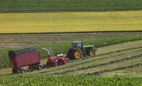 terenuri_agricole 3